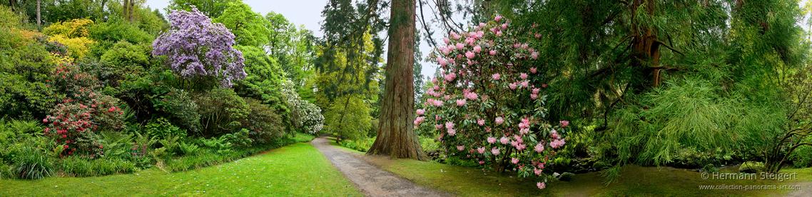 Bodnant Garden 5