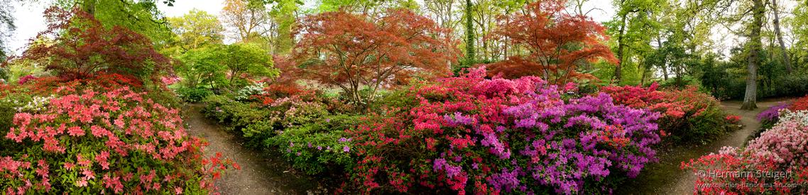 Exbury Gardens 1