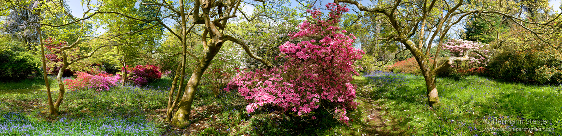 Exbury Gardens 6