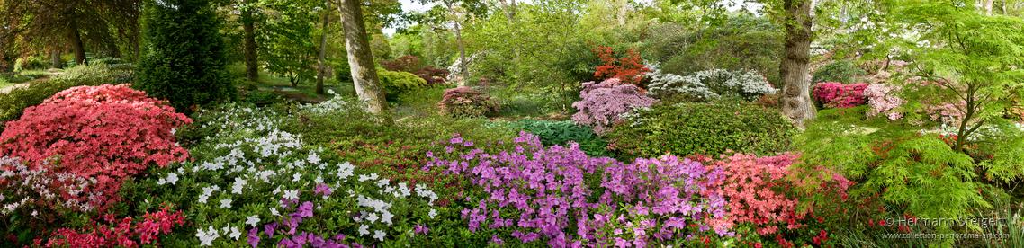 Exbury Gardens 7
