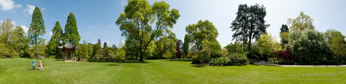 RHS Garden,Wisley 5