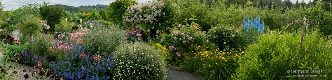 Rosemoor Garden 2