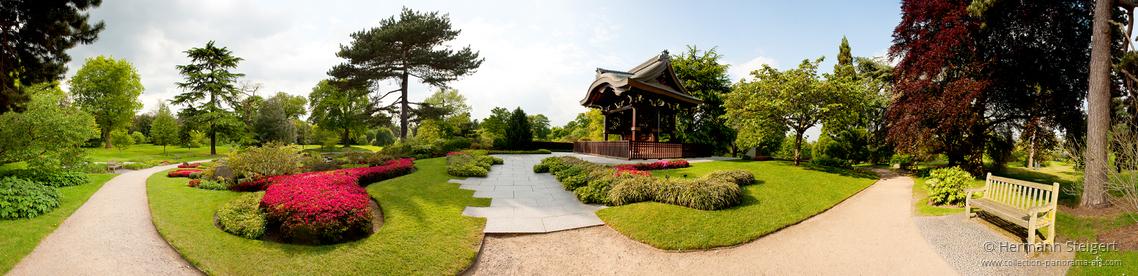 Royal Botanic Gardens Kew 4
