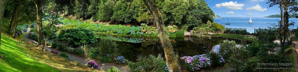 Trebah Garden 10