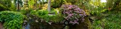 Bodnant Garden 10
