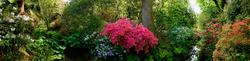 Bodnant Garden 2