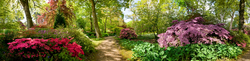 Exbury Gardens 11