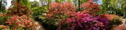 Exbury Gardens 2