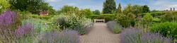RHS Garden,Wisley 12