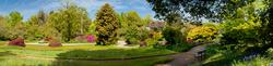 RHS Garden,Wisley 14