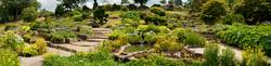 RHS Garden,Wisley 8