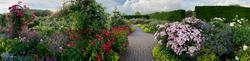 Rosemoor Garden 4