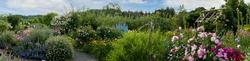 Rosemoor Garden 5