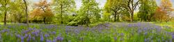 Royal Botanic Gardens Kew 1