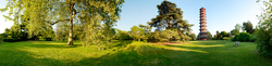 Royal Botanic Gardens Kew 6