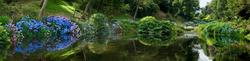 Trebah Garden 11
