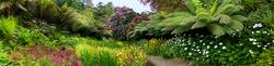 Trebah Garden 13