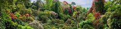 Trebah Garden 7